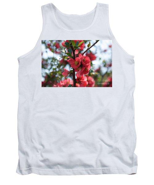 Tree Blossoms Tank Top