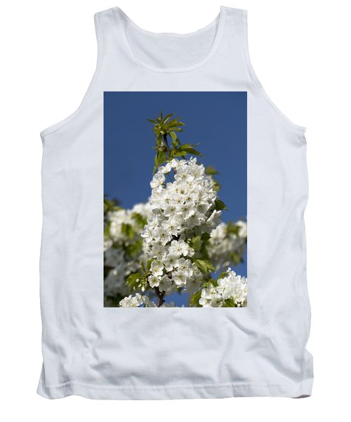 A Cluster Of Cherry Flowers Blossoming In The Springtime Tank Top