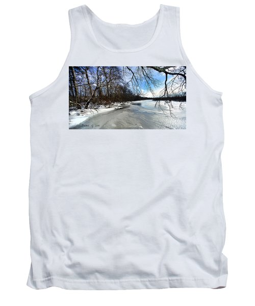 A Winters Day Tank Top by Diane Giurco