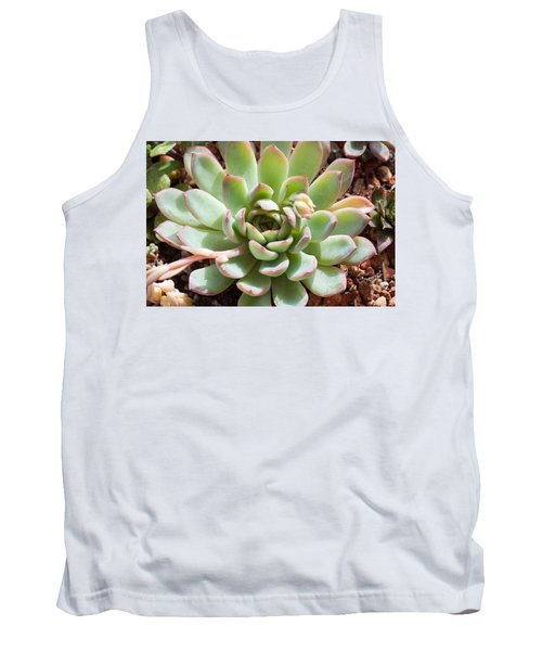 A Young Succulent Plant Tank Top by Catherine Lau