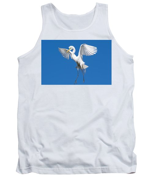 Aerial Ballet Tank Top by Kenneth Albin