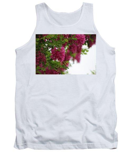 Amaranth Pink Flowering Locust Tree In Spring Rain Tank Top