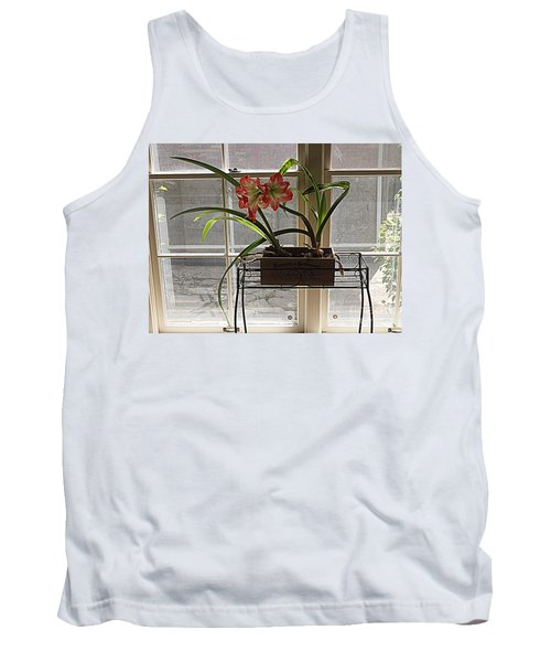 Tank Top featuring the photograph Amaryllis And Window by Nancy Kane Chapman