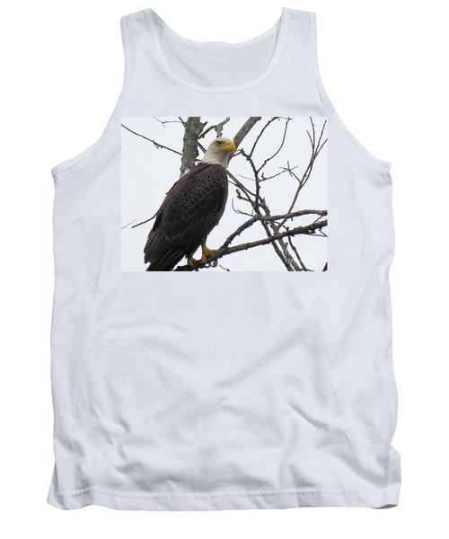American Bald Eagle Pictures Tank Top by Scott Cameron