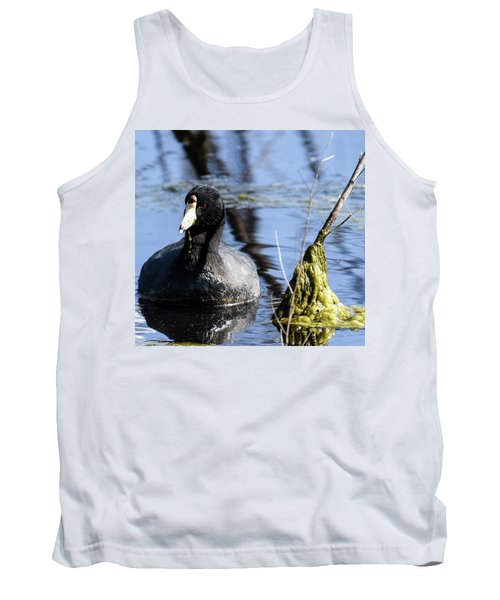 American Coot Tank Top by Gary Wightman