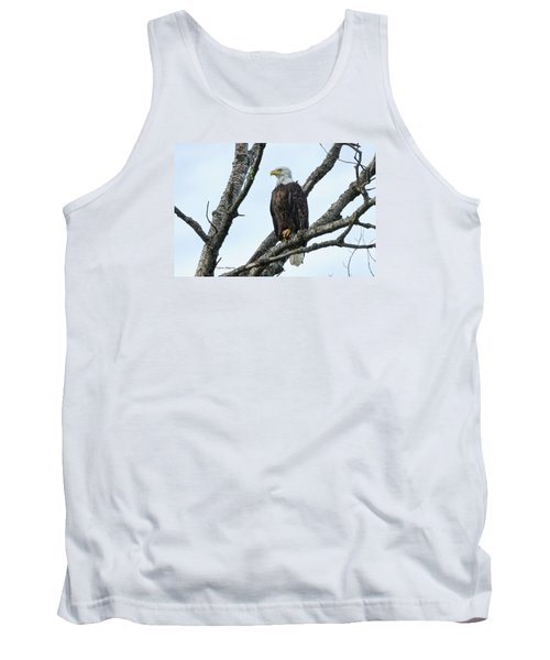 Tank Top featuring the photograph Bald Eagle 5 by Steven Clipperton
