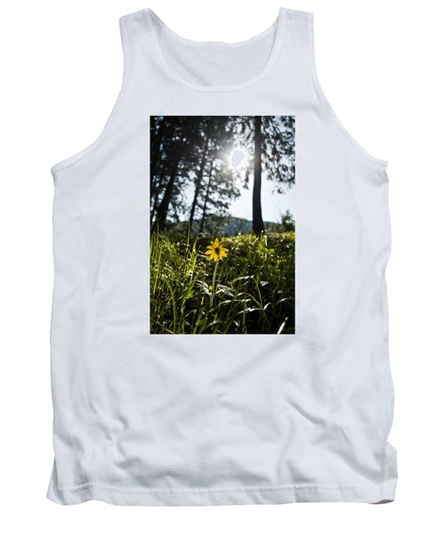Balsamroot Tank Top
