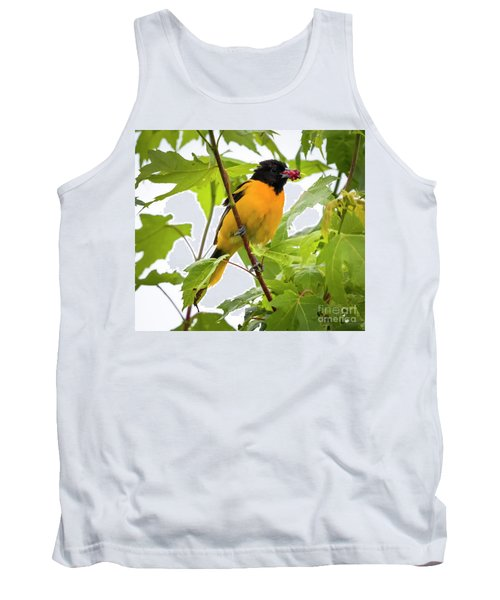 Tank Top featuring the photograph Baltimore Oriole With Raspberry  by Ricky L Jones