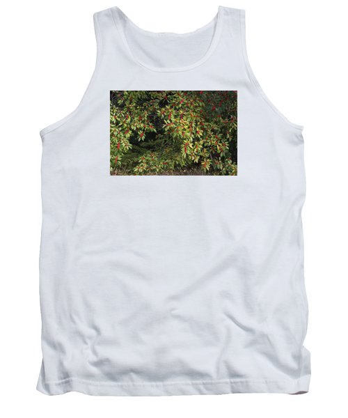 Tank Top featuring the photograph Berry Spread by Deborah  Crew-Johnson