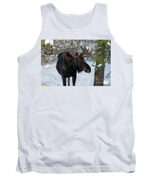 Big Moose Tank Top