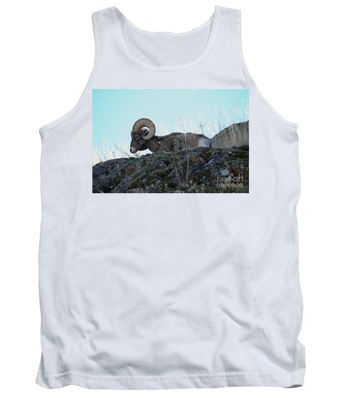 Bighorn Sheep Tank Top by Cindy Murphy - NightVisions