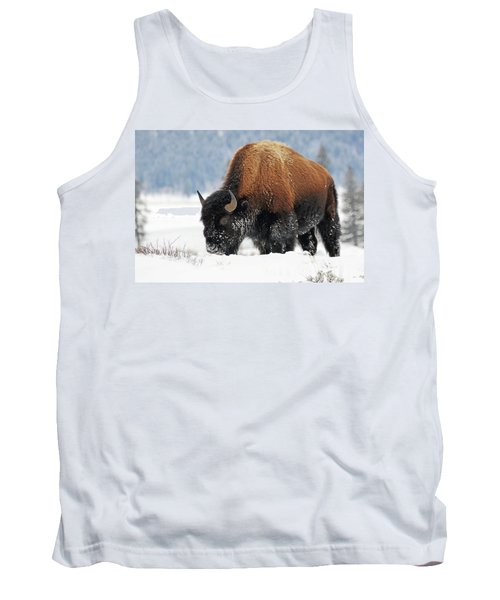 Bison Roaming In The Lamar Valley Tank Top