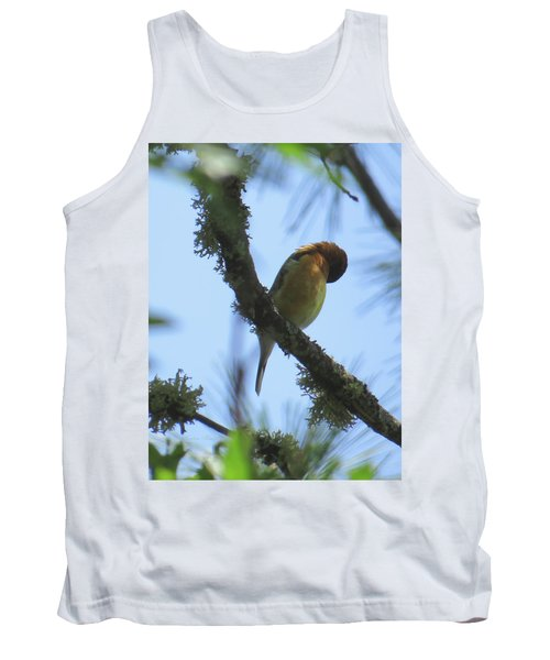 Bird Of Pray - Images From The Garden Tank Top
