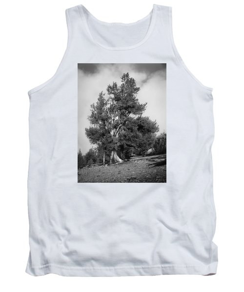 Bristlecone Pine Tank Top