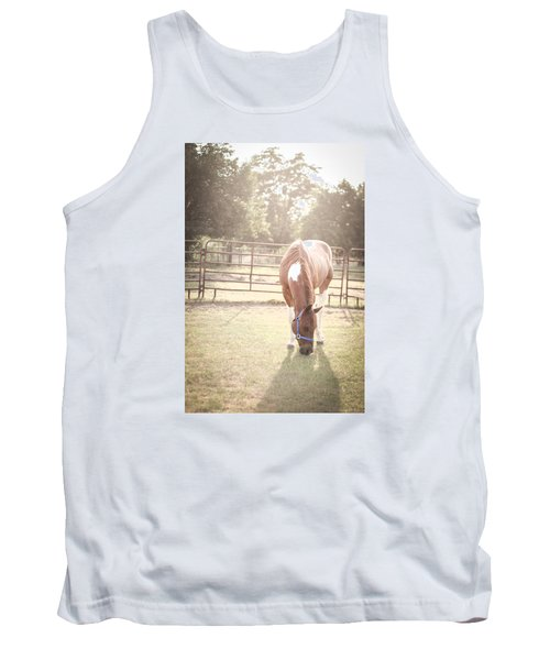 Brown Horse In A Pasture Tank Top