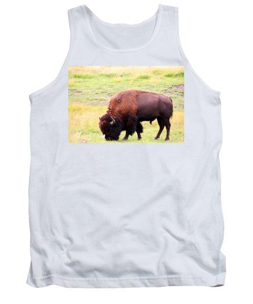Buffalo Roaming Tank Top