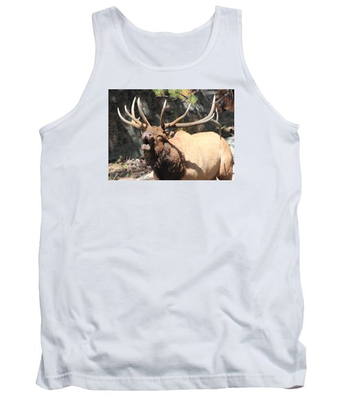 Bugling Bull Tank Top