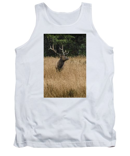Bull Elk In Yellowstone Tank Top