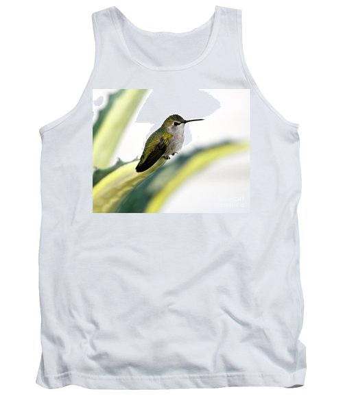 Calliope Hummingbird On Agave Tank Top