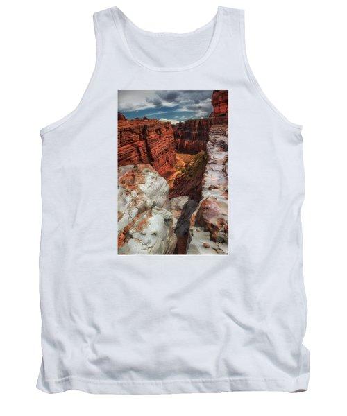 Canyon Lands Quartz Falls Overlook Tank Top