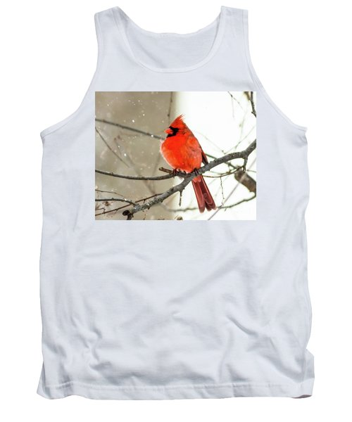 Cardinal In The Snow Tank Top by Ursula Lawrence