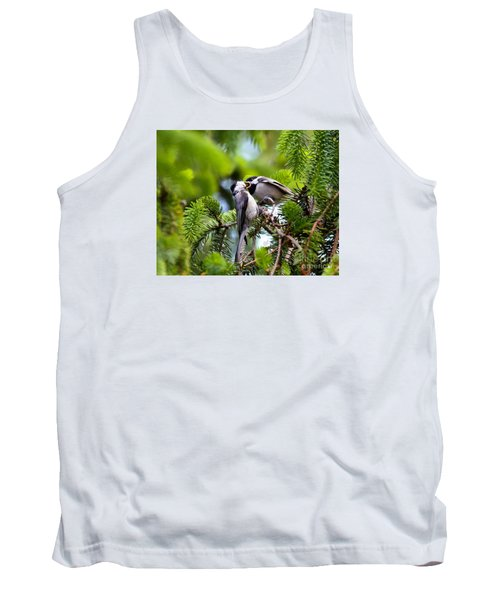 Chickadee Feeding Time Tank Top