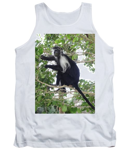 Colobus Monkey Eating Leaves In A Tree Tank Top