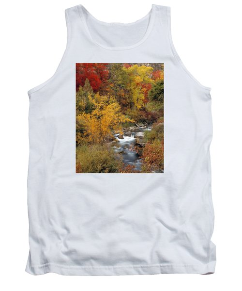 Colorful Canyon Tank Top