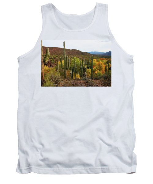 Coon Creek With Saguaros And Cottonwood, Ash, Sycamore Trees With Fall Colors Tank Top by Tom Janca