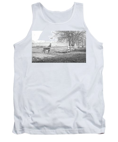 Curious Fog Tank Top