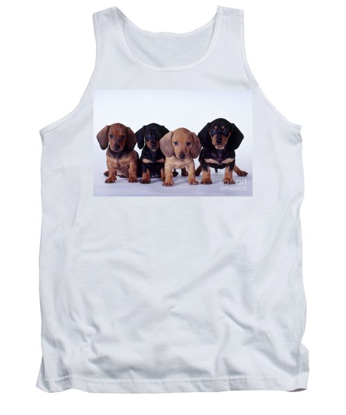 Dachshund Puppies  Tank Top