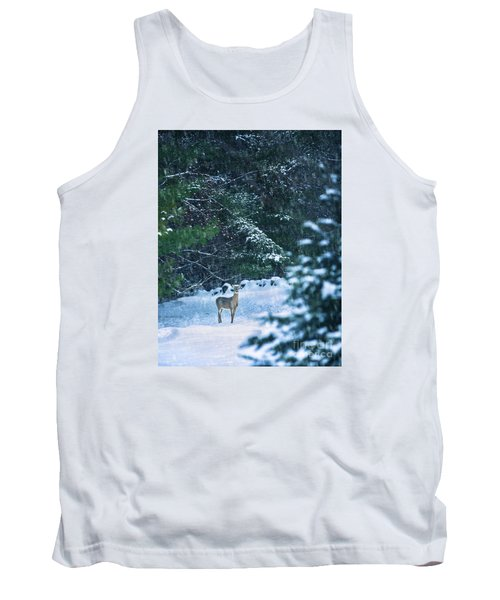 Deer In A Snowy Glade Tank Top by Diane Diederich