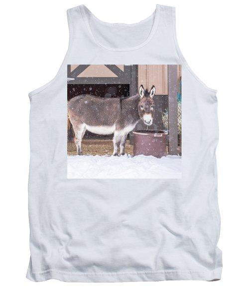 Donkey Watching It Snow Tank Top