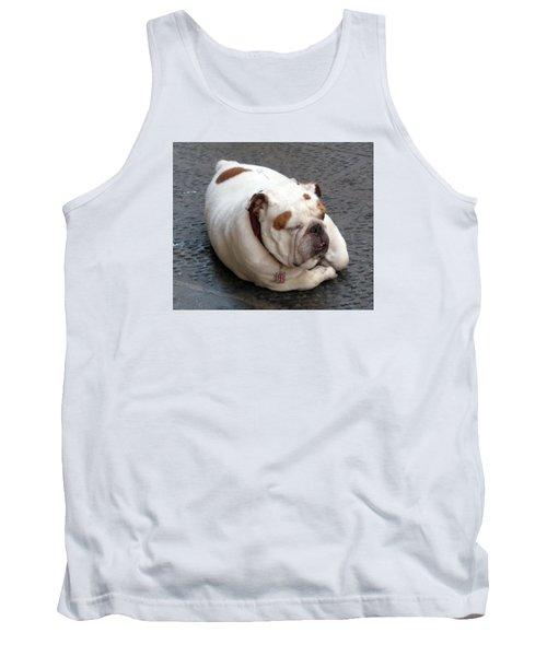 Eduardo Of Firenze Dog Tank Top by Lisa Boyd