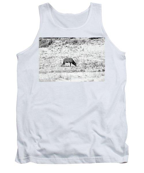 Elk In Black And White - Estes Park Tank Top