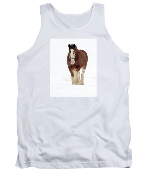 Tank Top featuring the photograph Equus Caballus.. by Nina Stavlund
