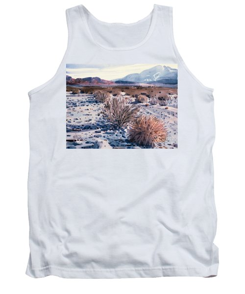 Evening In Death Valley Tank Top by Donald Maier