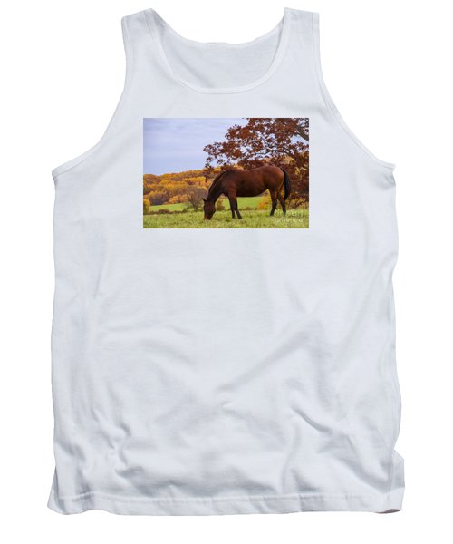 Fall And A Horse Tank Top by Rima Biswas