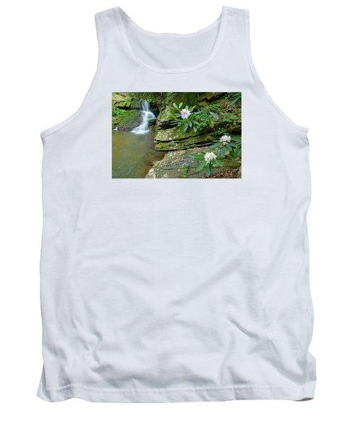 Falls On Catawba Creek Tank Top by Alan Lenk