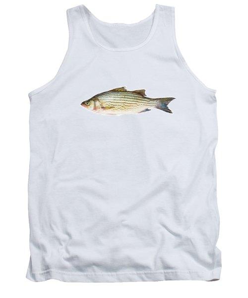 Fish Tank Top