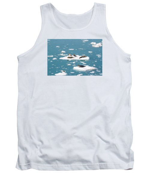 Five Habor Seals On Ice Flows Tank Top by Allan Levin