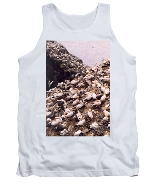 Gannet Cliffs Tank Top by Mary Mikawoz
