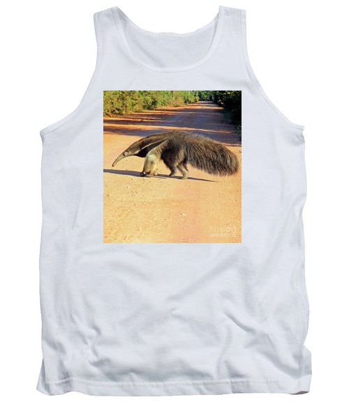 Giant Anteater Crosses The Transpantaneira Highway In Brazil Tank Top by Nareeta Martin