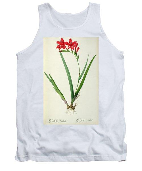 Gladiolus Cardinalis Tank Top