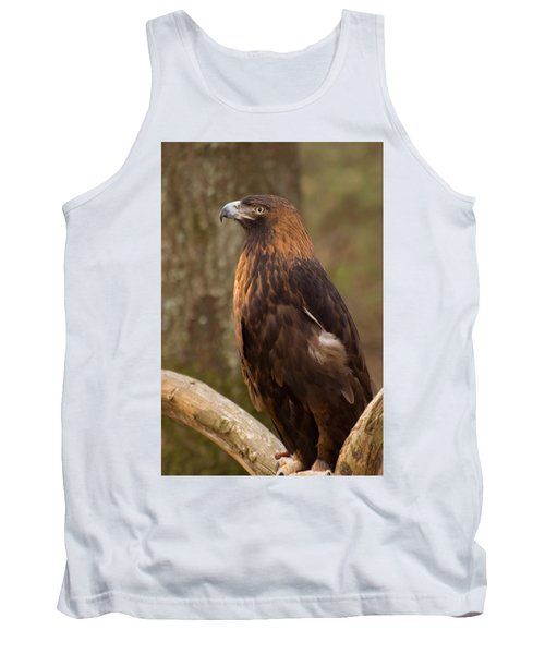 Golden Eagle Resting On A Branch Tank Top by Chris Flees