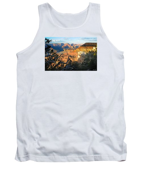 Grand Canyon South Rim - Sunset Through Trees Tank Top