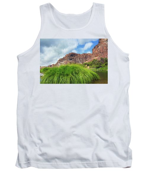 Grass Along John Day River In Central Oregon Tank Top
