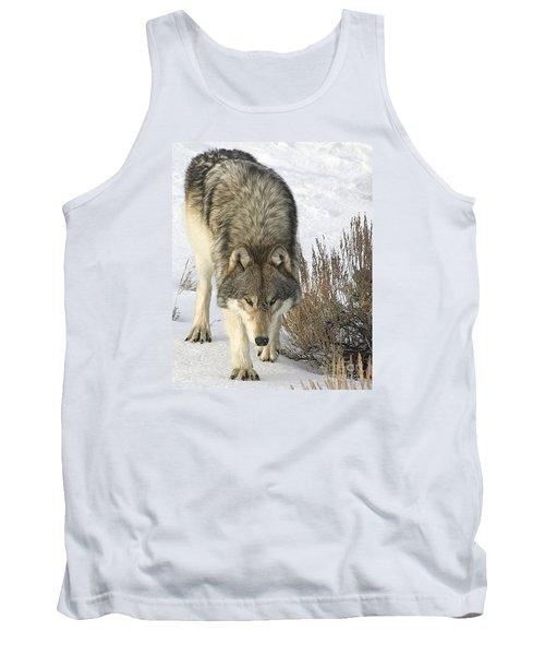 Gray Wolf Tank Top