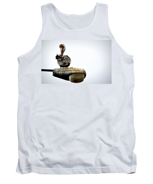 Grooming Time Tank Top by AJ Schibig