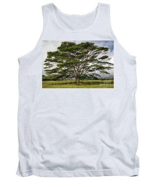 Hawaiian Moluccan Albizia Tree Tank Top